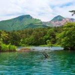 福島県・福島市の復縁屋の成功事例を紹介【真剣に復縁したいなら】